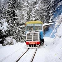 Romantic Journey to Shimla Manali Package