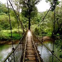 Delightful Coorg with Kabini Tour.