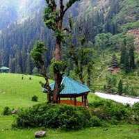 Kashmir Glimpses Tour