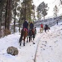 Unforgettable Himachal with Amritsar