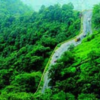 Tour Package Of Wayanad