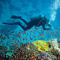 Andman Island holidays Package