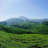 Green Kerala Tour