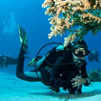 7 Days Holiday in Andaman(Family Special) Tour