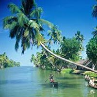 Periyar Tour with Tree house