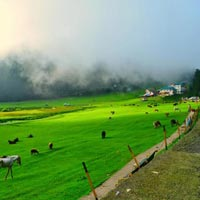 Himachal Retreat Tour