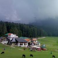 Vibrant Himachal Tour