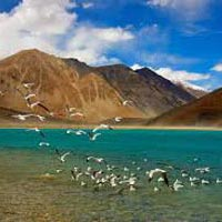 Tour to High Altitude Lakes in Ladakh Tour