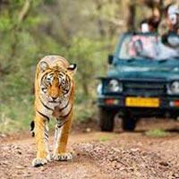 Best of Uttaranchal 6Nights/7Days