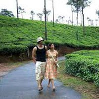 Coorg Delight Tour