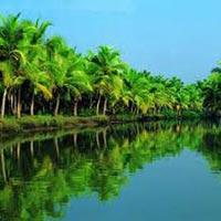 5N/6D Kerala Tour