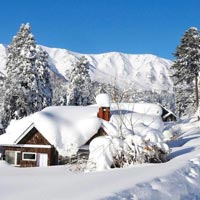 Kashmir Holiday Package (3N/4 Days)