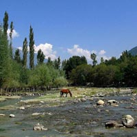 Beauty Of Kashmir Himalaya (7N/8 Days) Tour