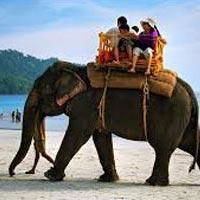 8D/7N Andaman Tour