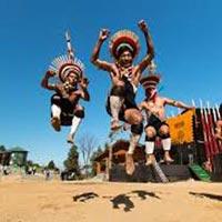 6 Days TUTC Kohima Luxury Camp Tour