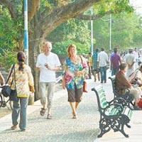 Kochi Sightseeing Day Tour