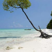 Havelock Escapade with a glimpse of Port Blair