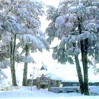 Shimla 3 star weekend packages for 03 days