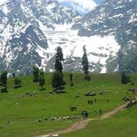 Shimla-Manali 6Days Tour
