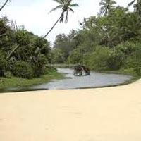 Exotic Goa Tour With Car