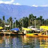 Trout Fishing In Kashmir Tour