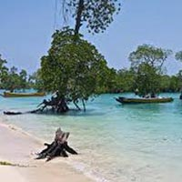 Incredible Andaman Island Tour