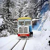 Romance At Hills - Shimla Tour