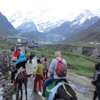 Badrinath and Kedarnath - Do Dham Yatra Tour