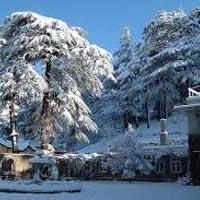Shimla Kullu Manali 5Night/6Days Tour Package