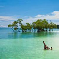 Port Blair - Havelock - Baratang (6N/7D) Tour