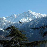 Incredible Himachal Tour