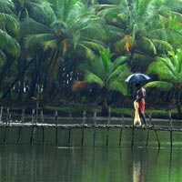 Coorg Tours