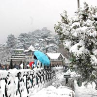 Honeymoon Special Shimla By Volvo Tour