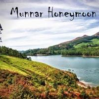 Munnar Pleasure - Honeymoon Special Tour