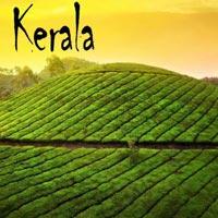 Unsuspected Kerala Tour