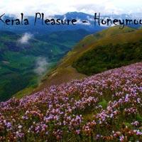 Pleasure In Kerala - Honeymoon Special Tour