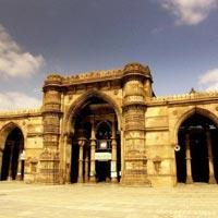 Wild life and Heritage of Gujarat Tour