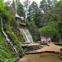 Exciting tour of Shimla, Manali & Chandigarh 3*