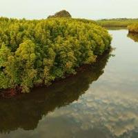 Andaman Lagoon Tour