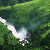 Sri Lanka Delights Tour