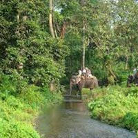 Jaldapara National Park : 2 Nights / 3 Days (Jungle Exclusive)