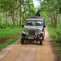 Kerala Offbeat Tour