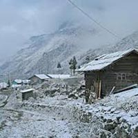 Alpine North Sikkim Tour
