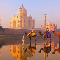 Essence of Golden triangle Tour