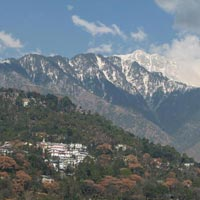 7 days holiday Package Shimla, Manali & Dharamshala