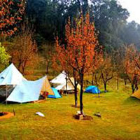 Bir Billing Camping and Paragliding Tour