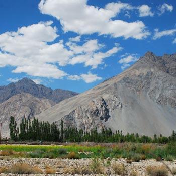 Ecstactic Ladakh Tour