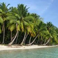 Andaman & Nikobar summer holiday package