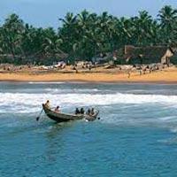 7 Nights 8 Days Kerala Tour