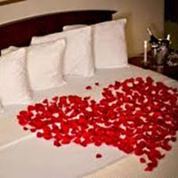 4 Night 5 Days Strue Package Honeymoon Package